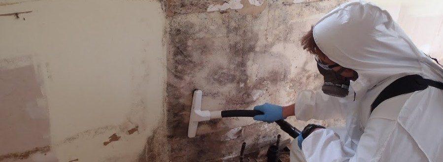 Убираем плесень со стены